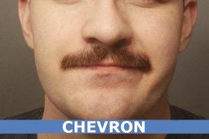 BIGOTE CHEVRON